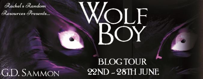 Wolf Boy tour banner