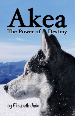 Akea - The Power of Destiny.jpg